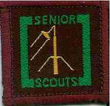 The Senior Scout Information Technology Badge